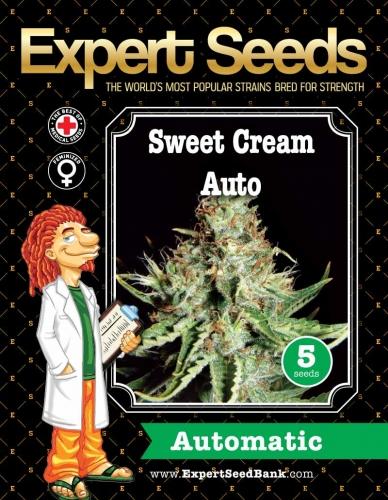 קרם מתוק - Expert Seeds