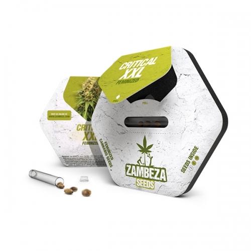 קריטי XXL - Zambeza Seeds