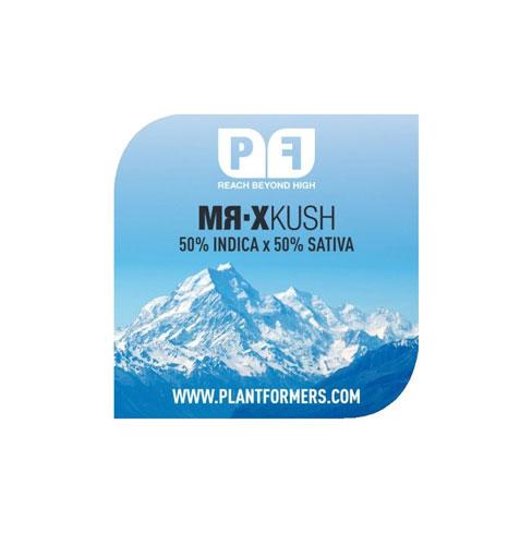 MR-X Kush - Plantformers