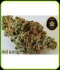 CBD Kong's Kush-Sumo Seeds