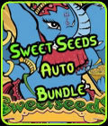Sweet Seeds Auto Bundle-Seed City Bundle Deals