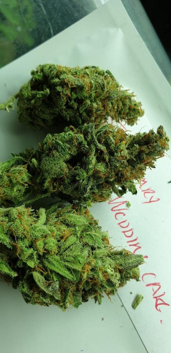 딸기 웨딩 케이크- Holy Smoke Seeds