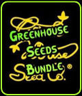 Greenhouse Seeds Bundle - Seed City Bundle Deals
