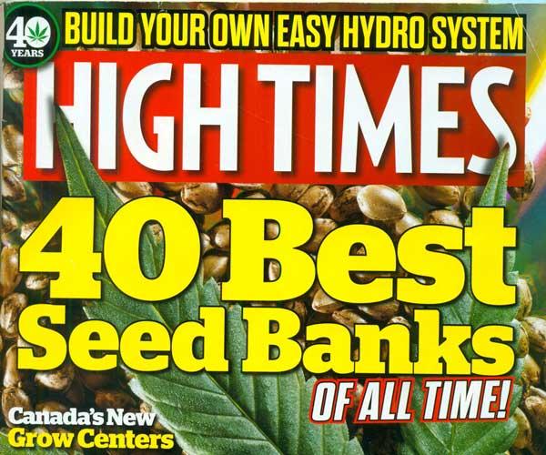 טיימס בנקים בראש זרעים