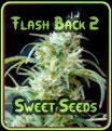 Flash Back # 2 - Sweet Seeds