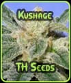 Kushage - TH Seeds