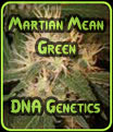 Martian Mean Green - DNA Genetics