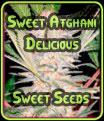 SAD (Sweet Afghani delicioso) - Sweet Seeds