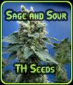 Sage y Sour - TH Seeds