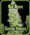 Big Bang Green House