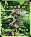 Granja de Crimea Blue Barney