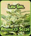 Semillas bajas muchacha avanzada