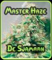 Domina Haze Semillas De Sjamaan