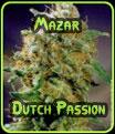 Mazar Semillas Dutch Passion