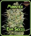 Eva Seeds Monster