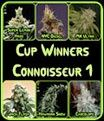 Cup Winners Connoisseur Bundle 1