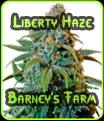 Libertad Haze Barneys Farm