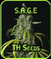 Sage - TH Seeds