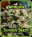 Warlock - Serious Seeds