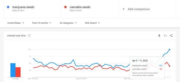 Marihuanos sėklų paieškose - visų laikų populiarumas