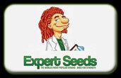 エキスパート種子