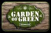 グリーンのガーデン
