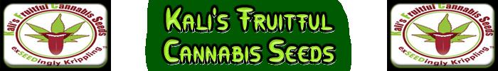 Fecundas semillas de cannabis de Kali