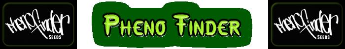 Fenol Finder Cannabis frön