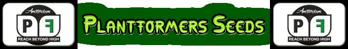 Plantformers Frön