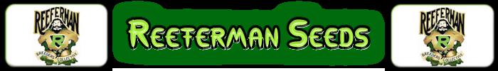 Reeferman Cannabis Hạt giống