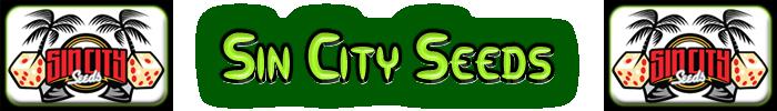 Semillas Sin City