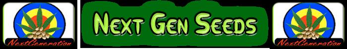 Nästa generations Cannabis frön
