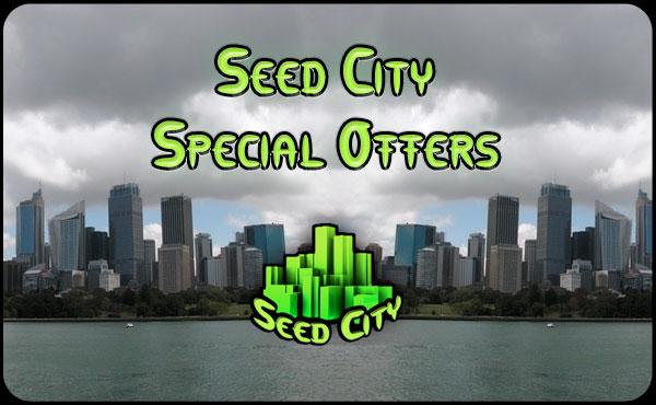 семеноводство город-специального предложения
