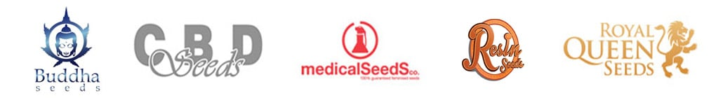 15%オフ Buddha Seeds,  CBD Seeds,  Medical Seeds,  Resin Seeds そして、 Royal Queen Seeds!